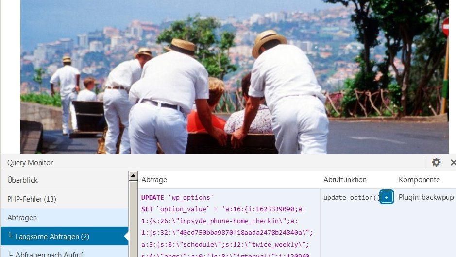 Plugin BackWPup bremst WordPress