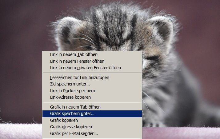 Grafik Bild speichern auf Rechner unter Ordner manuelle Auswahl